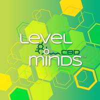 LevelMind_pillows-2